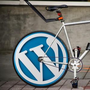 wordpress theme, wordpress logo bicycle wheel